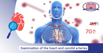 Examination of heart and carotid arteries
