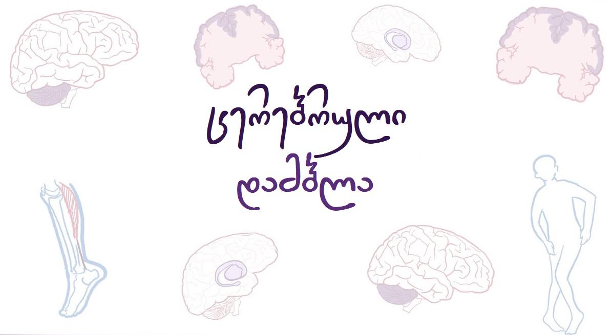 cerebruli_dambla