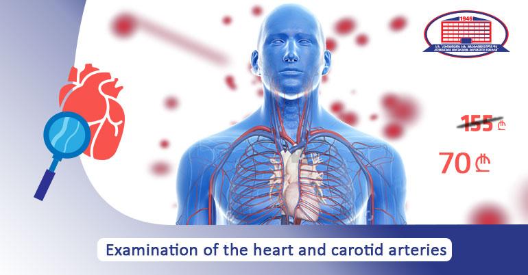 Examination of heart and carotid arteries